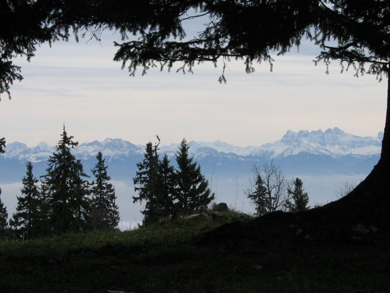 Eté indien dans le Jura Alpes%2015